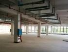 望城金洲北路全新 厂房出租 现房30000平米