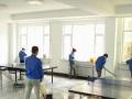 姐妹家政专业擦玻璃,家庭、单位保洁,新房开荒保洁