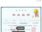 长春报专本科学历 东师北外网教 成考电大 选龙辰教育
