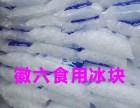 上海浦东展览中心世博展览馆食用冰块 降温冰块 干冰碎冰配送