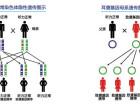 基因检测概念龙头股