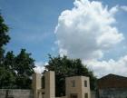 金康路厂房3000平米,砖墙铁皮顶,可分租