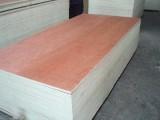 森原木业供应全杨木多层胶合板