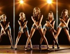 钢管舞爵士舞DS肚皮舞街舞职业舞蹈培训哪里好