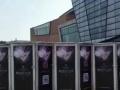 大型蜂巢迷宫 球幕影院设备出租租赁 自家设备