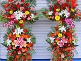 花卉租摆公司