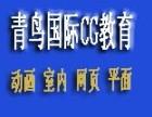 武汉青鸟国际平面设计精品班培训