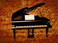 北京大兴区小学生音乐班 /大兴小学生音乐兴趣班
