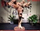 蚌埠崖柏根雕摆件观音达摩关公财神龙马根雕弥勒佛