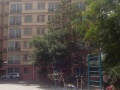 东部市场 飞天家园B区 南北 可按揭 中等装修