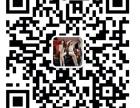 北京客车微信群/赛车微信群