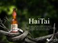 海态啤酒诚招全国各地独家代理商