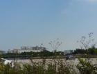唐家湾 高新区 厂房 8000平米厂房招租