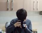 承接视频拍摄视频后期制作