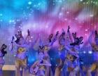 济宁 庆典礼仪 商业演出 展会活动 灯光音响舞台