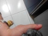 自家繁殖超可爱龙猫宝宝两枚 银斑DD和标灰DD