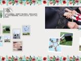 心智杰纪念册照片书设计制作 专业设计师免费设计