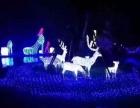 提供景区亮化灯光造型制作 大型灯光音乐节展览工厂