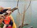 原生态柏坡湖渔家乐