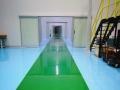 去浮无尘车间、厂房装修、环氧地坪工程施工
