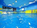 厦门水育巢亲子游泳教育培训,给孩子旺盛的生命力
