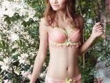 厂家直批 月影蝶品牌文胸可爱网纱蕾丝聚拢甜美日系性感内衣套装