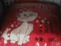 市内批发狗粮猫粮猫砂疫苗笼子等所有宠物用品都是批发