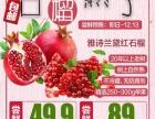 抢购 中国城戴斯海鲜自助餐248元/2人