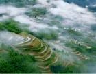 享受乌溪江畔的悠闲生活,体验华东第一长高空5D玻璃桥