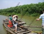 端午节 上海南汇农家乐 采五彩小番茄 钓龙虾划船 烧烤吃土菜