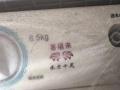 TCL半自动洗衣机168元