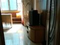 渭滨 文理学院老校 3室 1厅 主卧