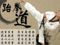 成人及中小学寒署假搏击跆拳道拳击散打格斗武术培训班