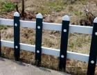 杭州地区绿植围栏 多种颜色可选择现货供货