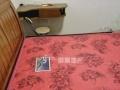 芷岸龙庭 整租精装一房一厅 家电齐全 干净舒适 随时看房