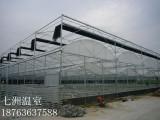 连栋温室大棚专业建设厂家_连栋薄膜温室