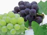 供應天津葡萄保鮮劑包裝紙