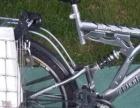 飞鹤自行车变速车