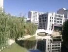 国际总部城 写字楼 119平米