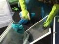 东莞市凤岗镇专业技术设备 清洗油烟机洗衣机等家电