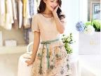 南菲燕2014夏装新款韩版小清新女装雪纺印花碎花修身连衣裙P32
