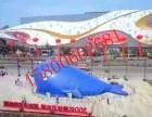 鲸鱼主题乐园百万海洋球鲸鱼岛出租价格