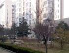 新泺大街 齐鲁软件园 高新银座温馨舒适首次出租