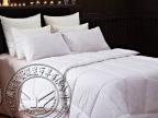 厂家现货酒店羽丝绒被芯宾馆纯白被子保暖舒适棉被芯家居床上用品