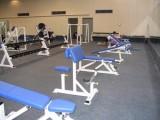 济南橡胶卷材厂家 运动场地健身房橡胶卷材定做