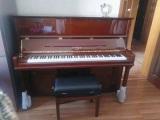和平电子琴购买价格,韵声琴行专业乐器品牌
