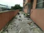 南宁市易兴防水专治房屋漏水不停补漏维修