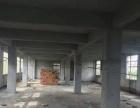南庄樵乐路边1栋3层约900平方米出租