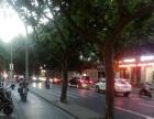 浦东 三林路沿街旺铺转让 业态不限 随时看房