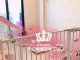 【郑州梦幻格林宠物王国】完美品质小体超精致博美俊介